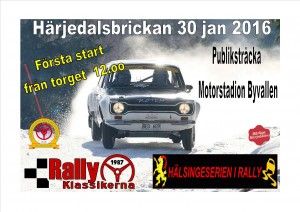 Annons rally 2016